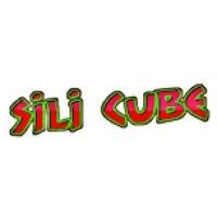 SILI CUBE